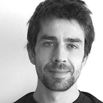Denis Vannier